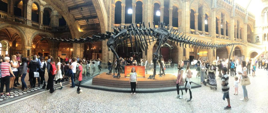 Visiting Dippy at the Natural History Museum in London