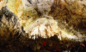 A guided tour at Postojna Cave in Slovenia
