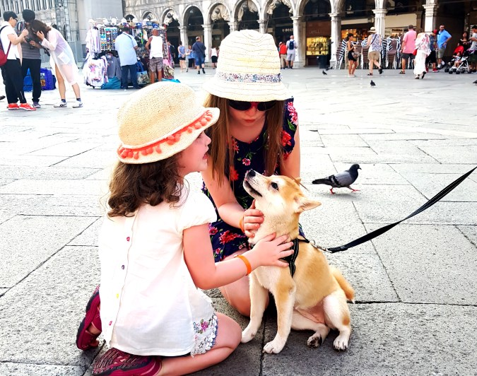 Petting pups in Piazza San Marco in Venice