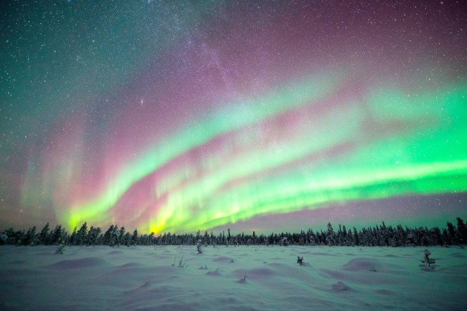 Northern Lights tiered above the Finnish forests