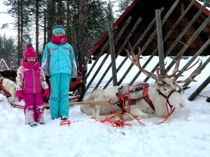 Santa's Reindeer Park at Santa Claus Holiday Village in Rovaniemi, Finnish Lapland