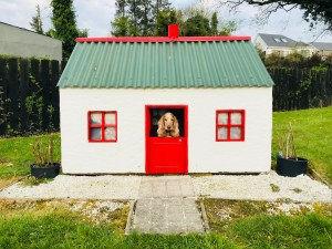 Rosie in her new house beside the River Shannon