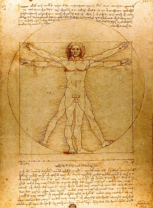 Vitruvian Man on display at the Leonardo da Vinci Museum, Florence