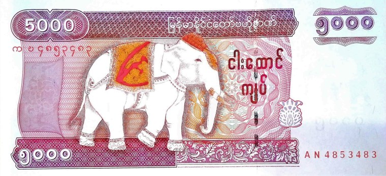 Myanmar 5000 Kyats Banknote front, featuring white elephant