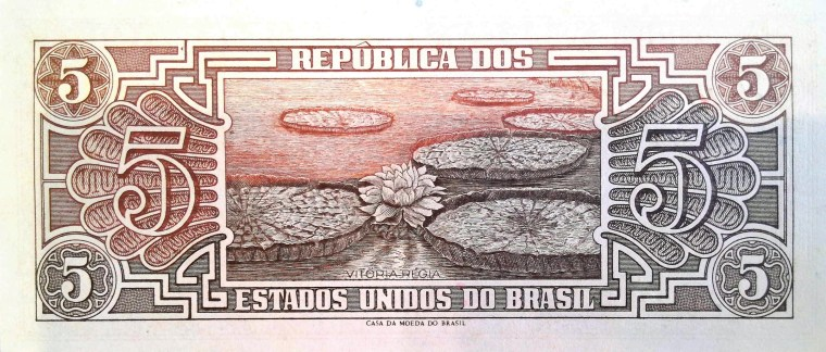 Brazil 5 Cruzeiros Banknote back featuring lily pads