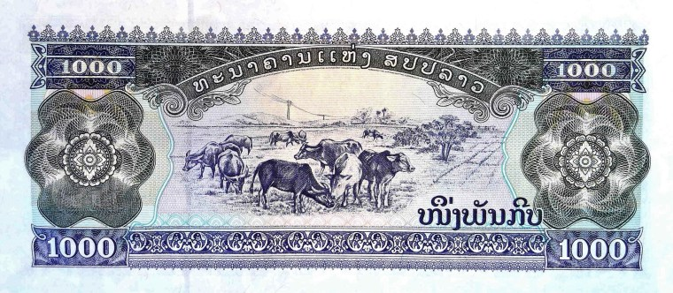 Laos 1000 kips banknote, year 2003 back, featuring cattle