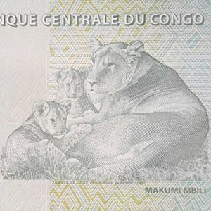 democratic republic of congo 20 francs banknote back, year 2003, featuring lioness and 2 cubs