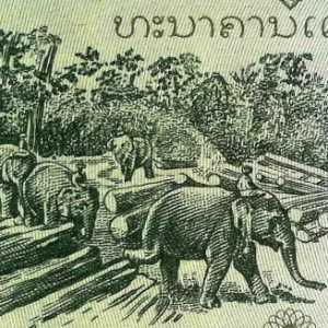 Laos 5 Kip 1979 banknote back (2) featuring elephants in logging industry