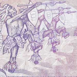 closeup of Mozambique 5000 Metical banknote 1988 banknote back (2)