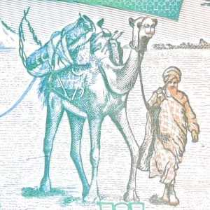 Somalia 5 Shilling 1994 banknote front (2) featuring camel caravan