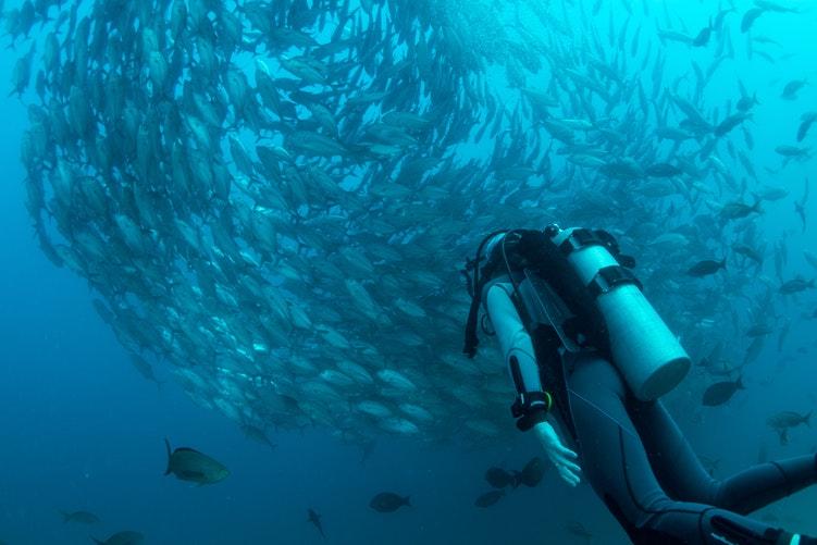 Instructor diving scuba