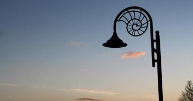 ammonite street lamp