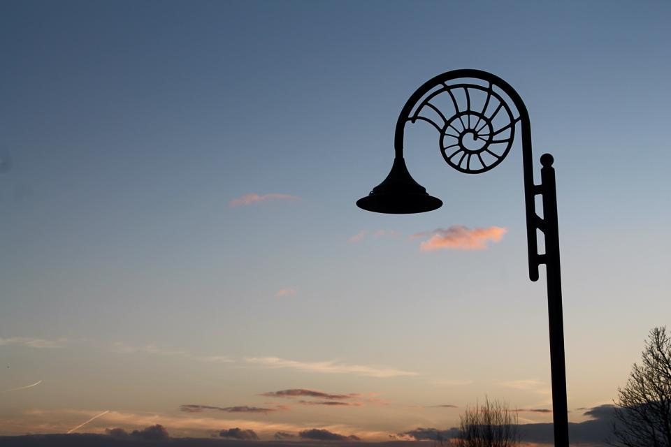 ammonite street lamp