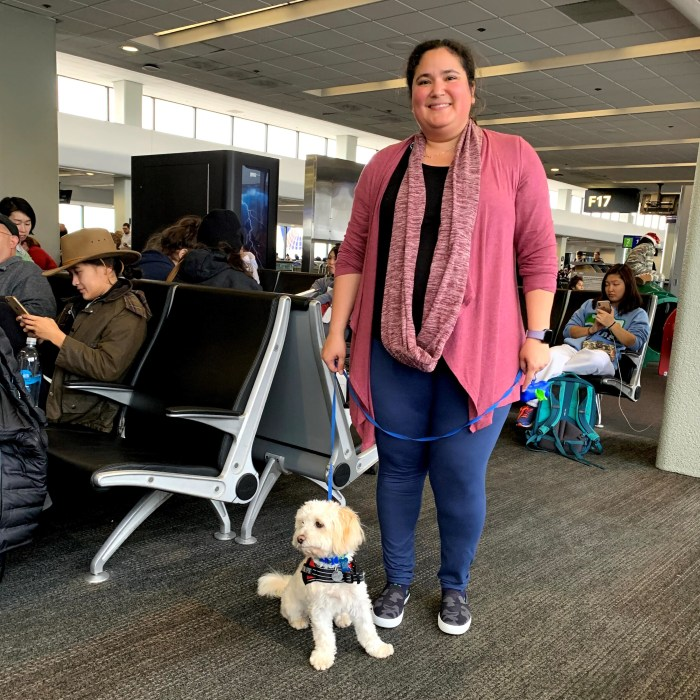 Woman holding dog on a leash in the airport