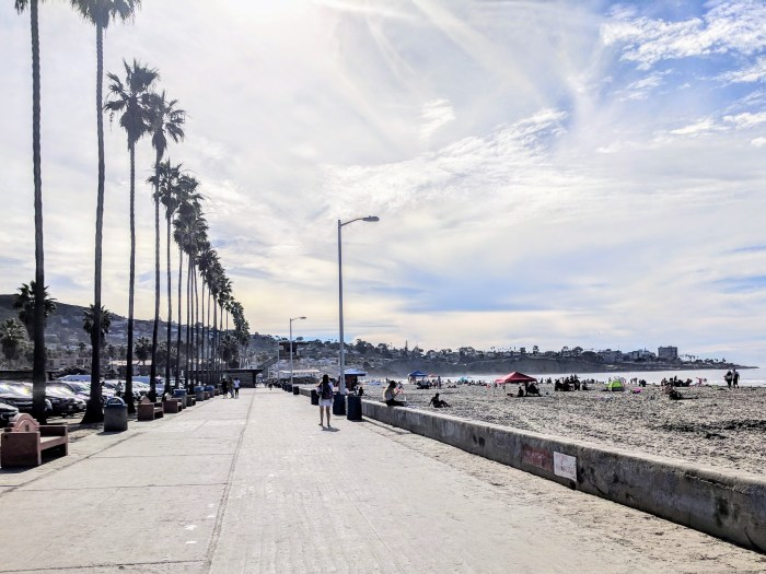 The boardwalk at La Jolla, CA lined with palm trees and the beach.