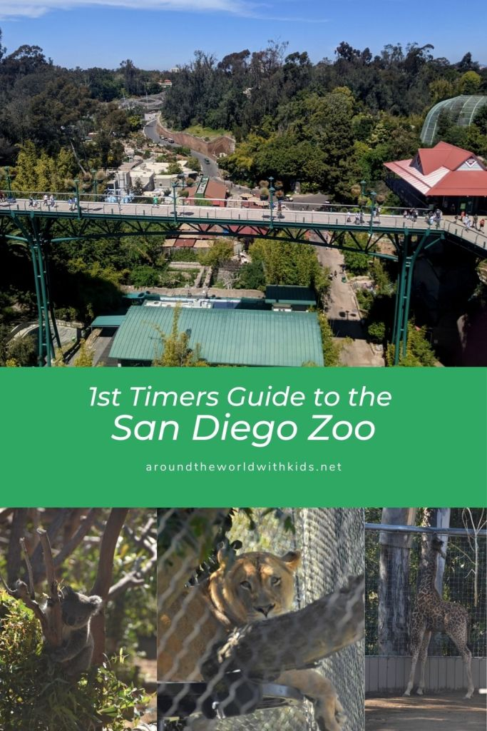 1st Timers Guide to the San Diego Zoo