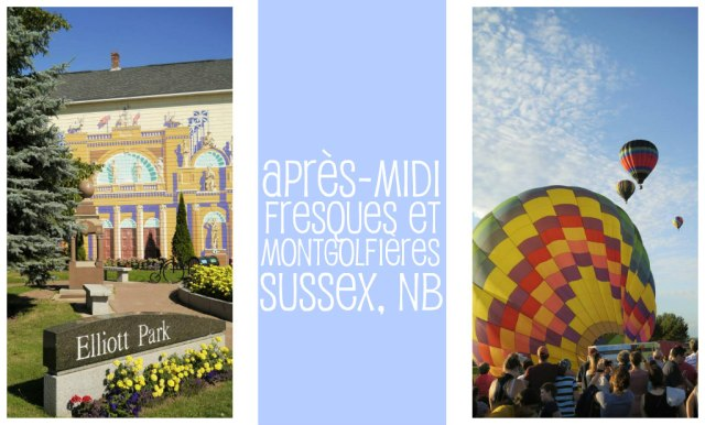 pinterest-apres-midi-fresques-montgolfieres-sussex-nb