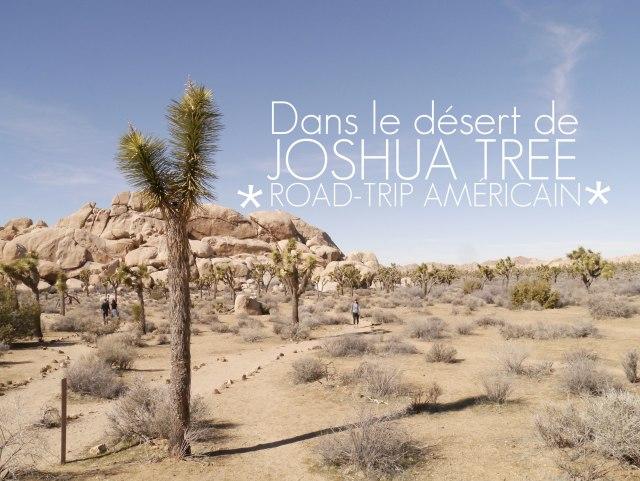 titre Joshua Tree