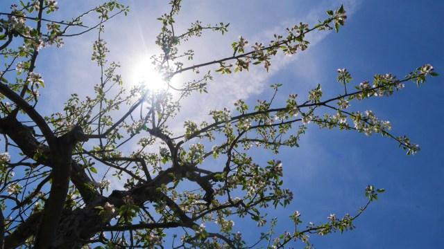 printemps moncton blog voyage arpenter le chemin