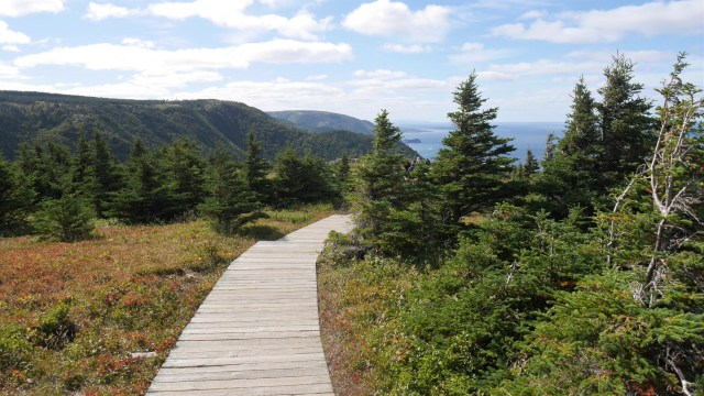 sentier skyline cap-breton parc national nouvelle-ecosse canada blog voyage arpenter le chemin cabot trail