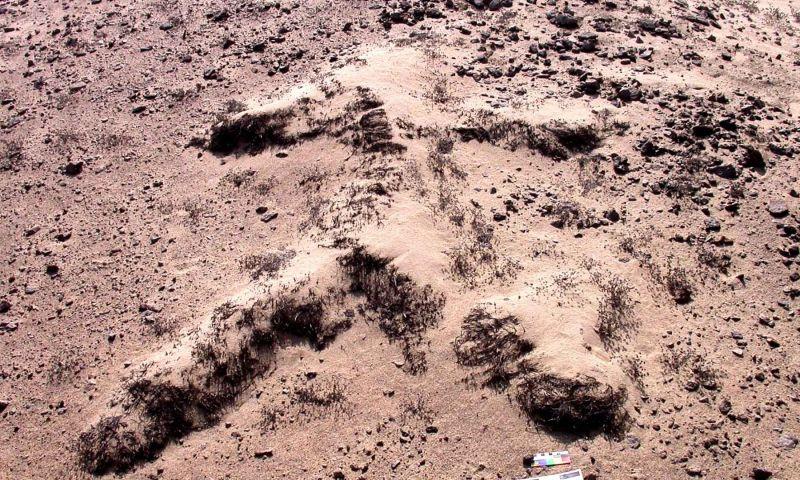 Geoglifos de cerro Campana serían únicos en Perú por su técnica constructiva