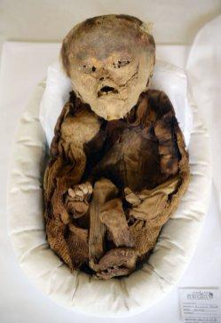 Discover-mummified-pre-inca-baby-Puruchuco-Huaquerone21
