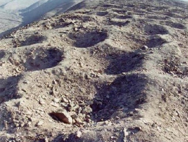 Did the Inca use a mysterious line of holes to collect TAX? Ancient empire may have used 6,000 pits to store and count tributes