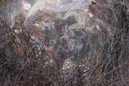 arte-rupestre-huaylillas-15