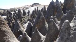 pampachari-bosque-piedras-apurimac-6