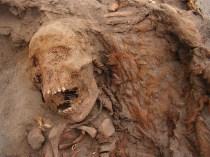 Los investigadores continúan desentrañando los eventos en Las Llamas, y esperan finalmente explicar por qué y cómo los humanos apelaron a lo sobrenatural en un intento de controlar un mundo natural impredecible. FOTOGRAFÍA DE GABRIEL PRIETO
