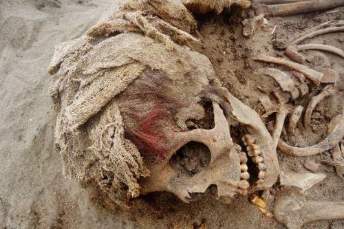 La cultura Chimú floreció entre los siglos 1000 a 1200 de nuestra era en la costa norte del territorio peruano y entre sus prácticas destacan los sacrificios a sus divinidades locales en rituales sagrados. Foto: Cortesía/Proyecto Arqueológico Huanchaco