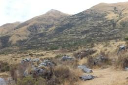 Quillarumiyoc-Anta-Cusco-38