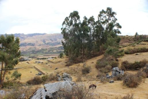 Quillarumiyoc-Anta-Cusco-41