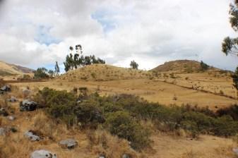 Quillarumiyoc-Anta-Cusco-42