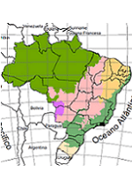 Mapas de cobertura vegetal do MMA