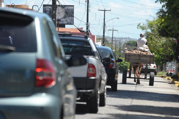Não há qualquer controle sobre o tráfego de carroças pelas ruas de Natal. Audiência Pública convocada pelo Ministério Público tenta iniciar um projeto para apontar soluções também para maus tratos dos animais