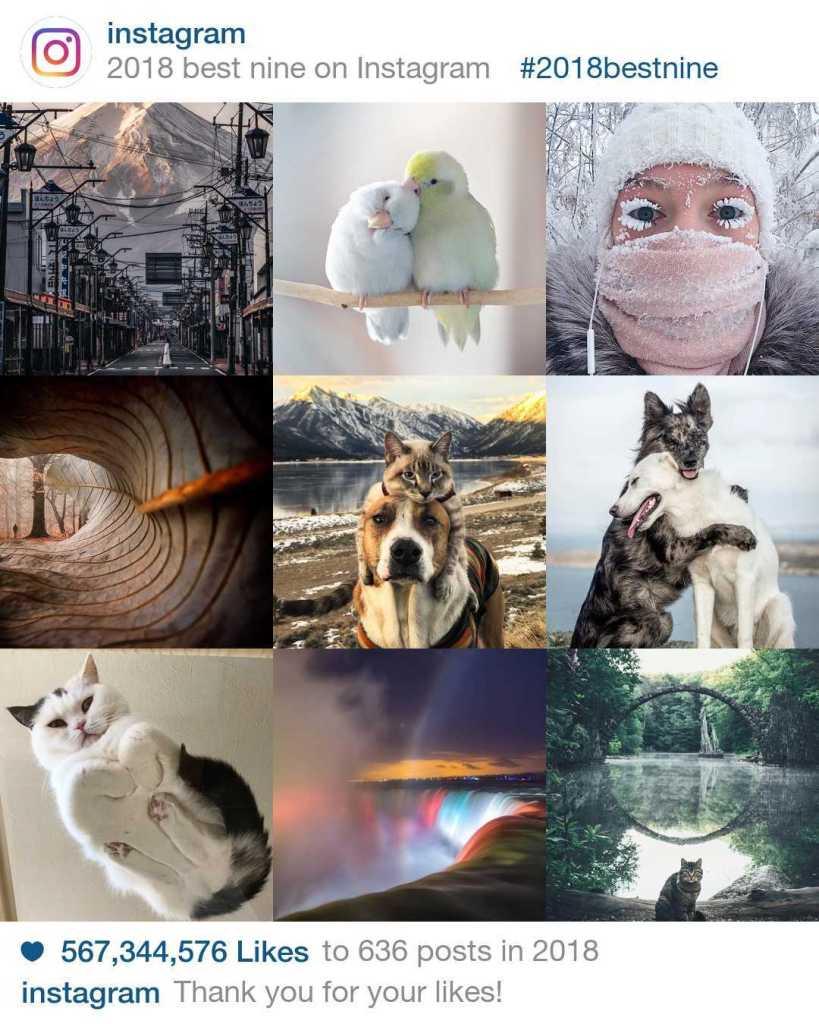 Best Nine 2018: Como fazer retrospectiva no Instagram 1