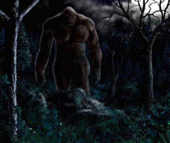 pe-grande-escuro