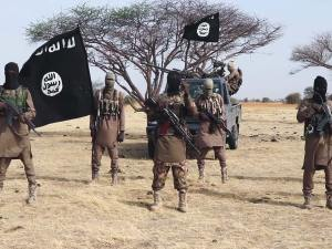 Teroris Boko Haram