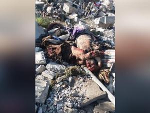 Agresi Saudi di Yaman