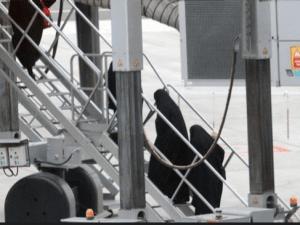 Turki Pulangkan 11 Teroris ISIS Asal Prancis Awal Bulan Depan