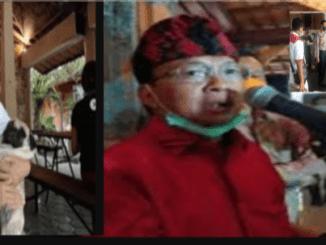 """Surat """"Pedas"""" Terbuka Niluh Djelantik Jawab Pernyataan Blunder Gubernur Bali Soal Video Viral Pesta Turis"""
