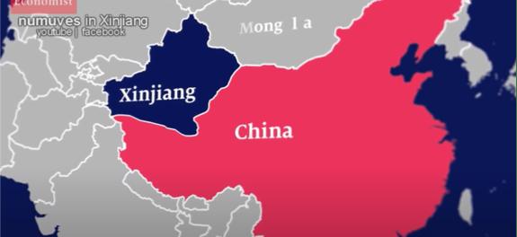 Vlogger Kanada Bongkar Kebohongan Media Barat soal Penindasan Muslim Uyghur