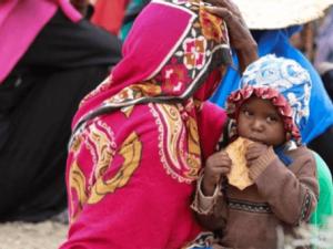 300 Organisasi Anti Perang Serukan Penghentian Perang di Yaman