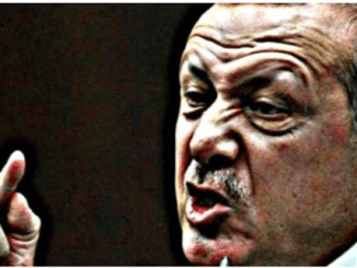 Jurnalis Turki: Erdogan Pendukung Teroris di Suriah