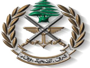 Israel Culik Seorang Penggembala Lebanon di Perbatasan