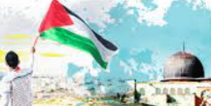 Dina Sulaeman Menyoal Donasi untuk Palestina