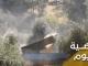 Balasan Hizbullah Bubarkan Niat Sok PM Israel