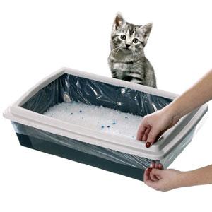 Lettiera per gatti meglio la sabbia o quella sintetica