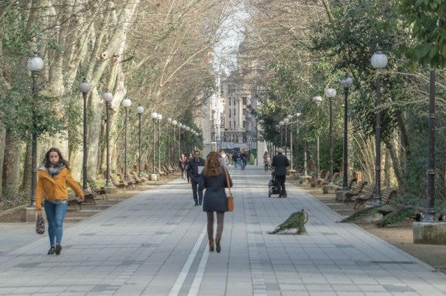 Paseo central de Campo Grande